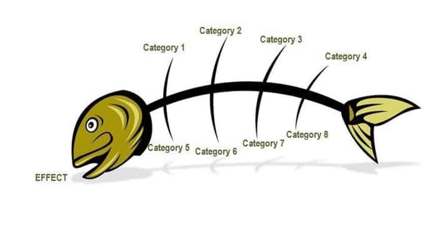 fish head diagram how can a fish help solve a process problem? - sixsigma dsi #14